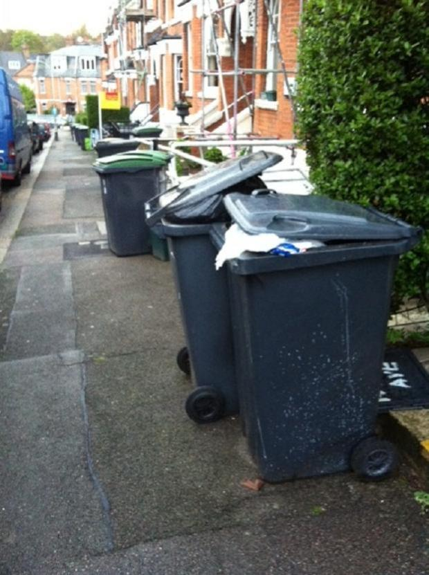 Group sets out to tackle bin issues