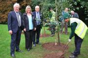 Duncan Wilson OBE, Linda Lennon CBE and Mike Fitt OBE at the birch tree-planting ceremony