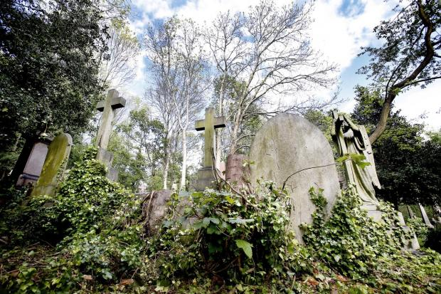 The eerie setting of Highgate Cemetery is believed by some to be among the most haunted hotspots in north London